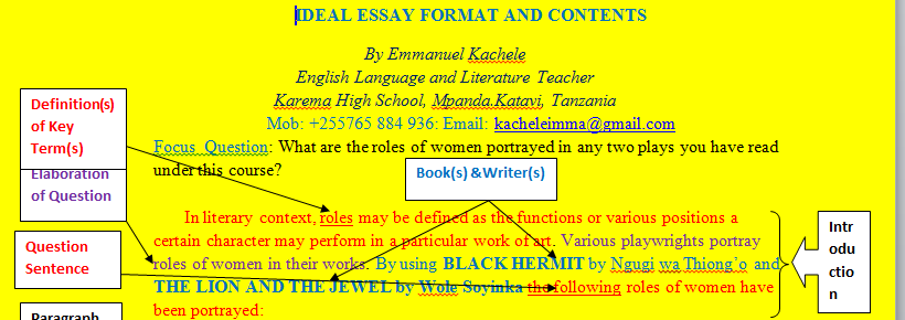 a good introduction of a literary essay - Literary Essay Format