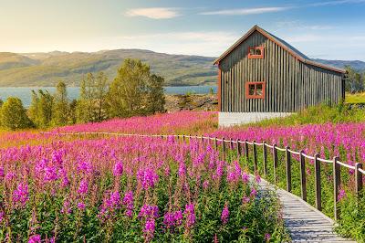 ¿Cuándo visitar Noruega? La mejor época para visitar Noruega
