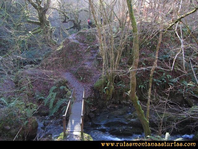 Ruta de las Foces del Rio Pendón y Varallonga: Puente en las Foces del Pendón
