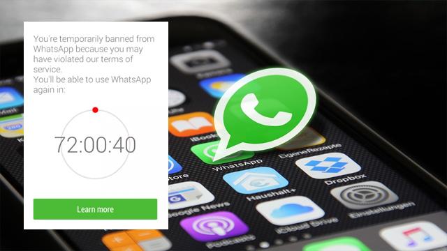 Cara Mengatasi WhatsApp Kena Banned Gampang Banget