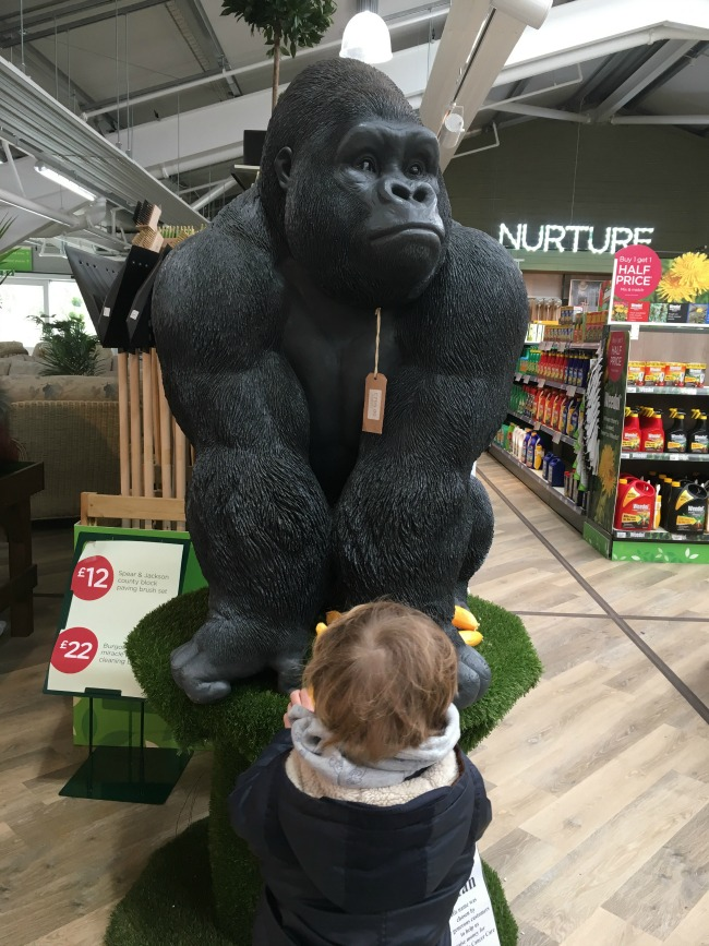 Our-Weekly-Journal-20-March-toddler-looking-at-a-gorilla