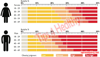A Quick Look at Healthy Body Fat Percentage