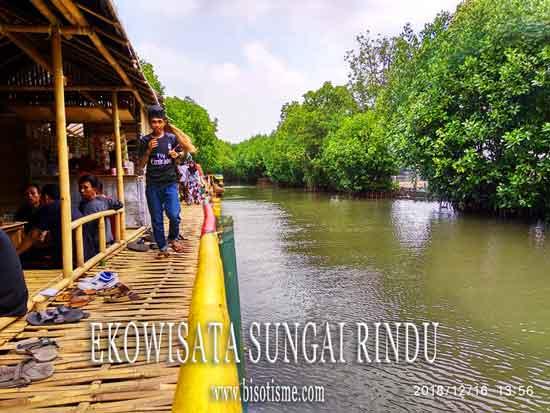 Destinasi Ekowisata Mangrove Sungai Rindu Sembilangan Babelan