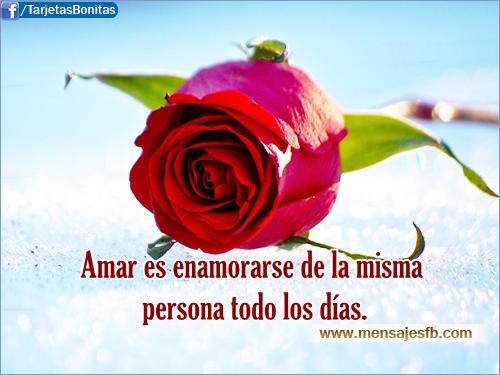 Rosas Rojas Con Frases De Amor: Imagenes De Rosas Rojas Con Frases