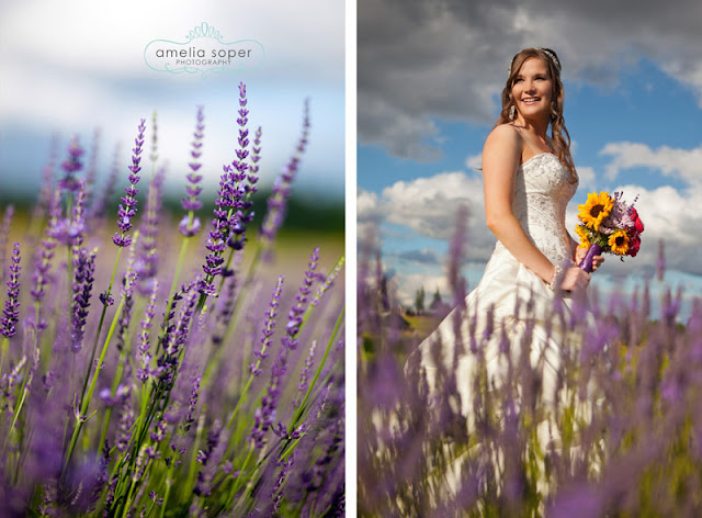 {Interlude} Amanda's Bridal Session