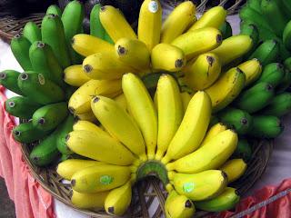khasiat manfaat pisang mas kirana