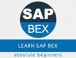 SAP Business Explorer ebook