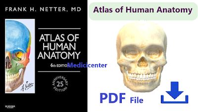 NETTERS ATLAS OF HUMAN ANATOMY PDF For FREE Download