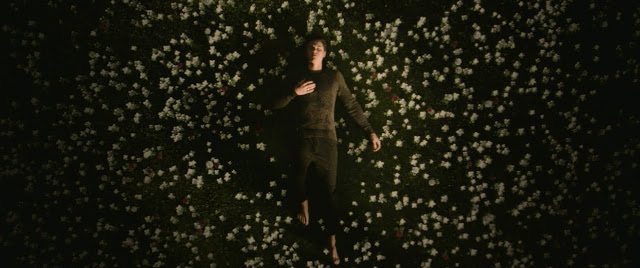 "Shawn Mendes Unveils ""In My Blood"" Music Video"