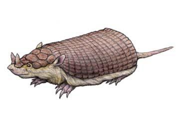 la mulita cornuda prehistorica de argentina Peltephilus