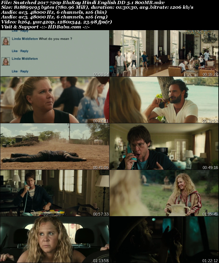 Snatched Hindi Dual Audio Full Movie Download,Snatched 2017 (Hindi - English) 720p Bluray 1GB Movie,Snatched Hindi Dual Audio 480p Bluray 300MB Download Free HD MKV MP4