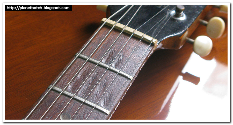 Pitted fretboard old Gibson guitar