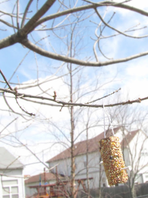 create your own birdfeeder