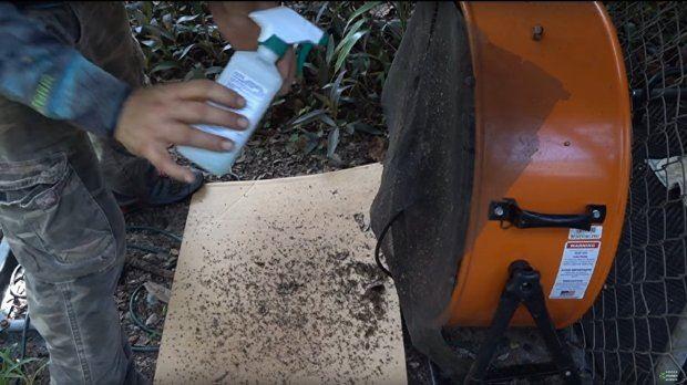 Lelaki Ni Dedah Cara Bunuh Beribu Ekor Nyamuk Dalam Satu Malam