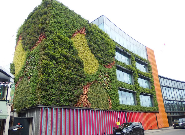 A closer look at the green wall - I love the rest of the colourful exterior too
