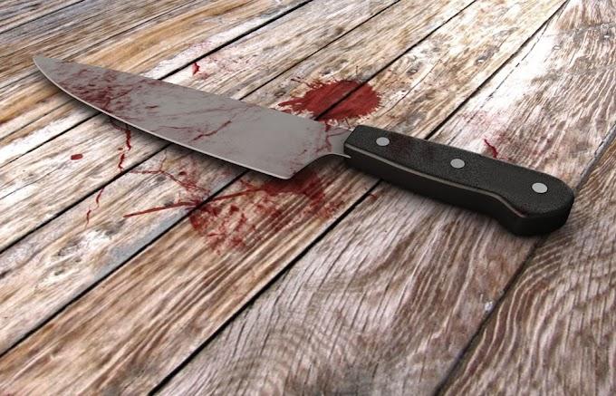 18-year-old student allegedly stabs boyfriend to death