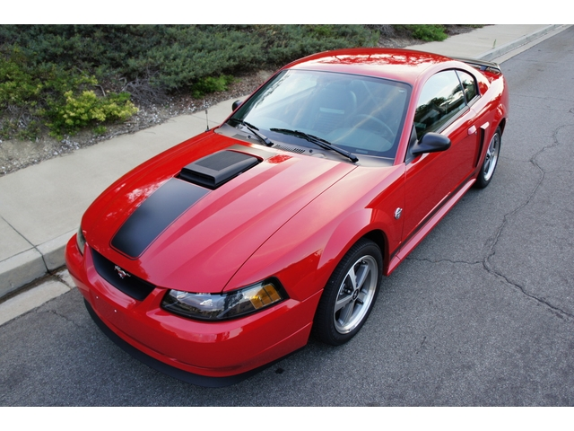 daily turismo 15k 2004 ford mustang mach 1 4200 original miles. Black Bedroom Furniture Sets. Home Design Ideas