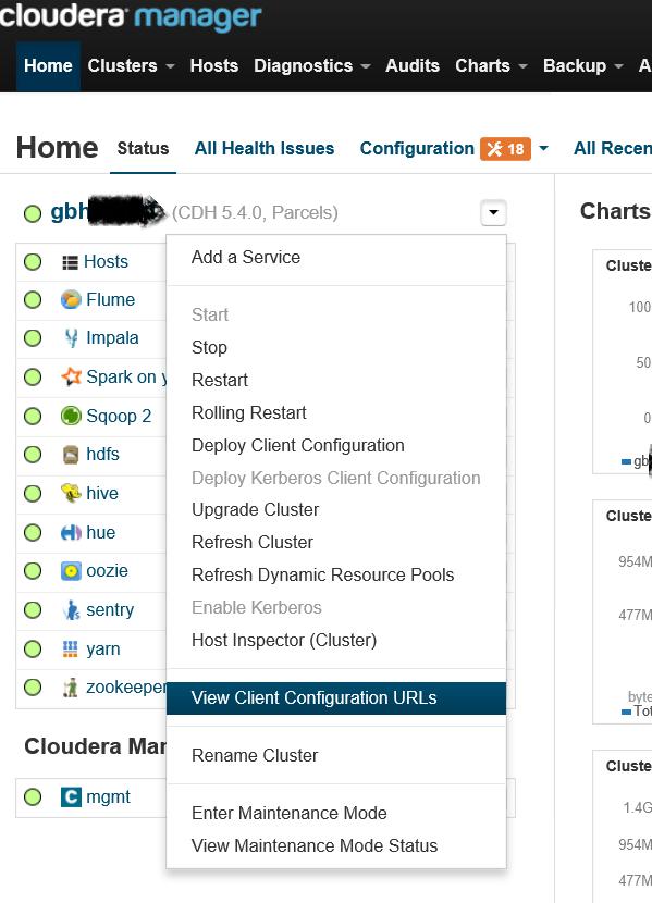 KamuDBA: Custom Hadoop Client Configuration