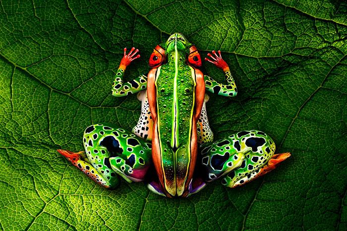 amazing-body-Frog