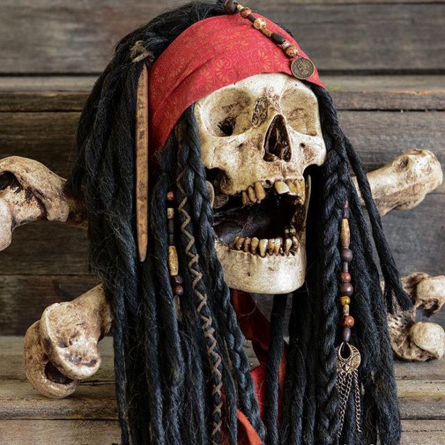 Artista cria incríveis peças decorativas com crânios humanos