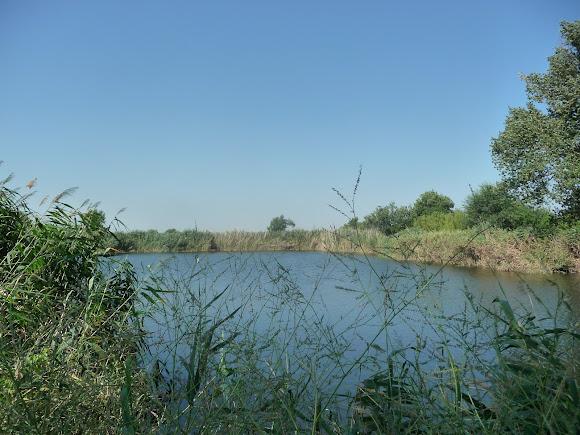 Река Волчья. Днепровский бассейн Чёрного моря