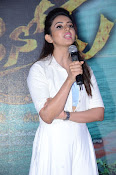 Rakul Preeth at Sarrainodu Success Meet-thumbnail-10