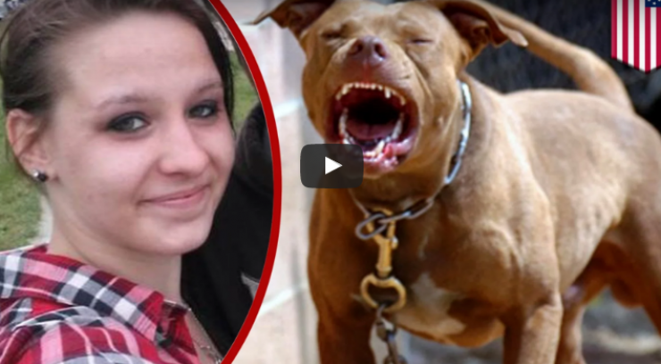 بالفيديو فتاة أمريكية تهب جسدها لكلاب 'بيتابول' لم تحاول المقاومة بعد أن أقدمت على هذا الفعل بارادتها