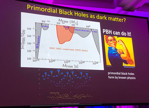Still some slight chance for black holes to be dark matter (Source: Joseph Silk at 233rd AAS meeting)