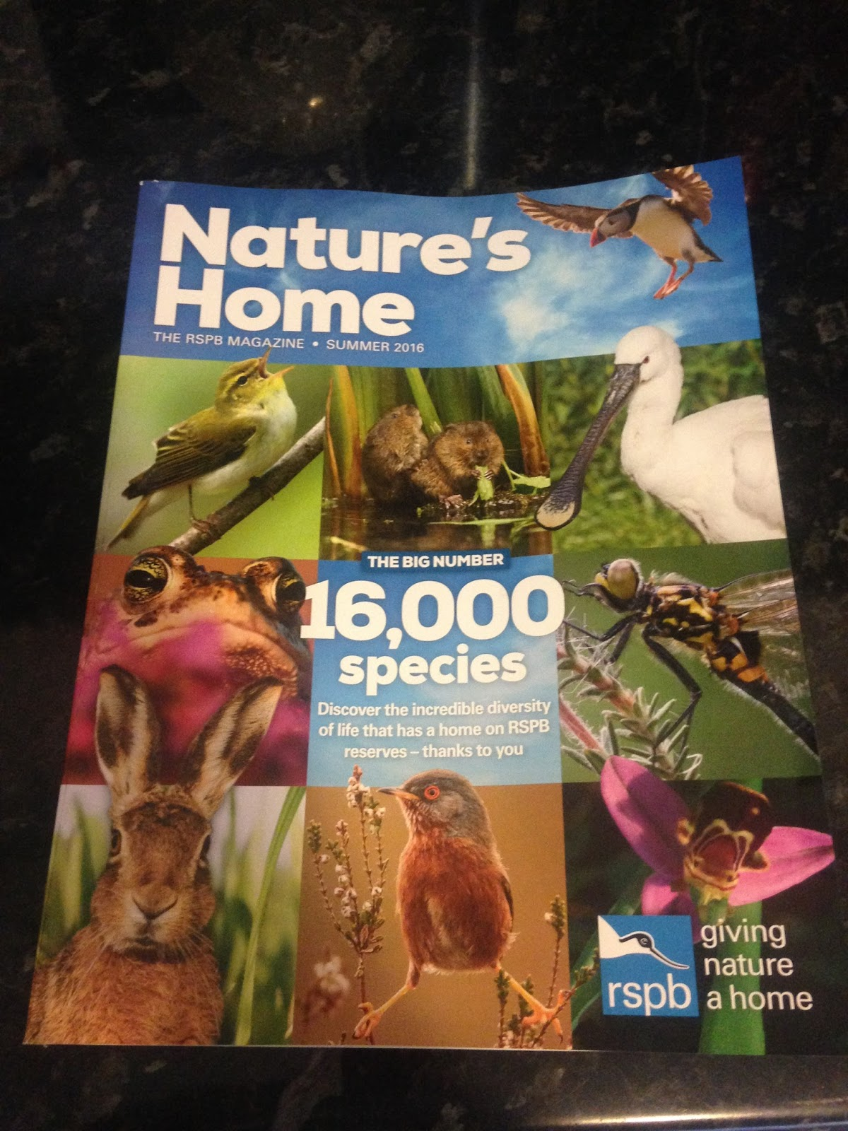 It also has a a5 map of the uk with all the rspb locations marked and a car sticker