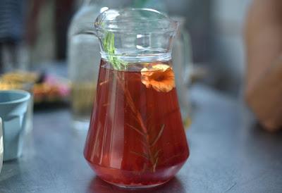 herbal, jamur kombucha, kandungan kombucha, kombucha, manfaat kombucha, Manfaat Tanaman Herbal, teh herbal, teh kombucha,