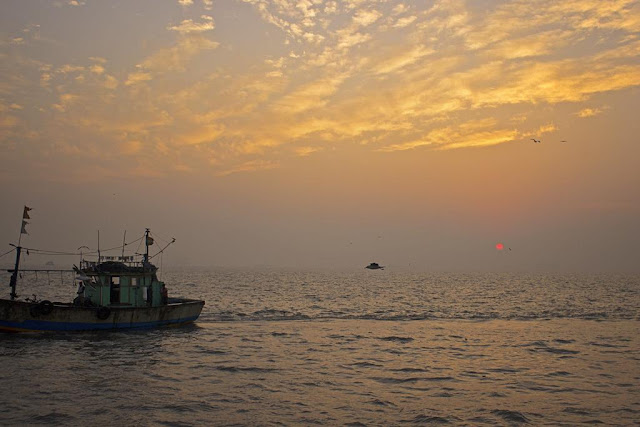 skywatch, dawn, sassoon docks, arabian sea, birds, sunrise, fishing boat, sky, mumbai, india