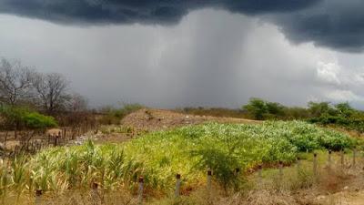 Resultado de imagem para chuva no rn