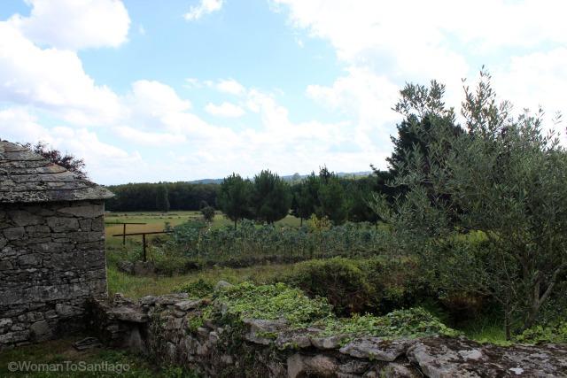 santa-eulalia-de-boveda-lugo-camino-de-santiago-primitivo-campo