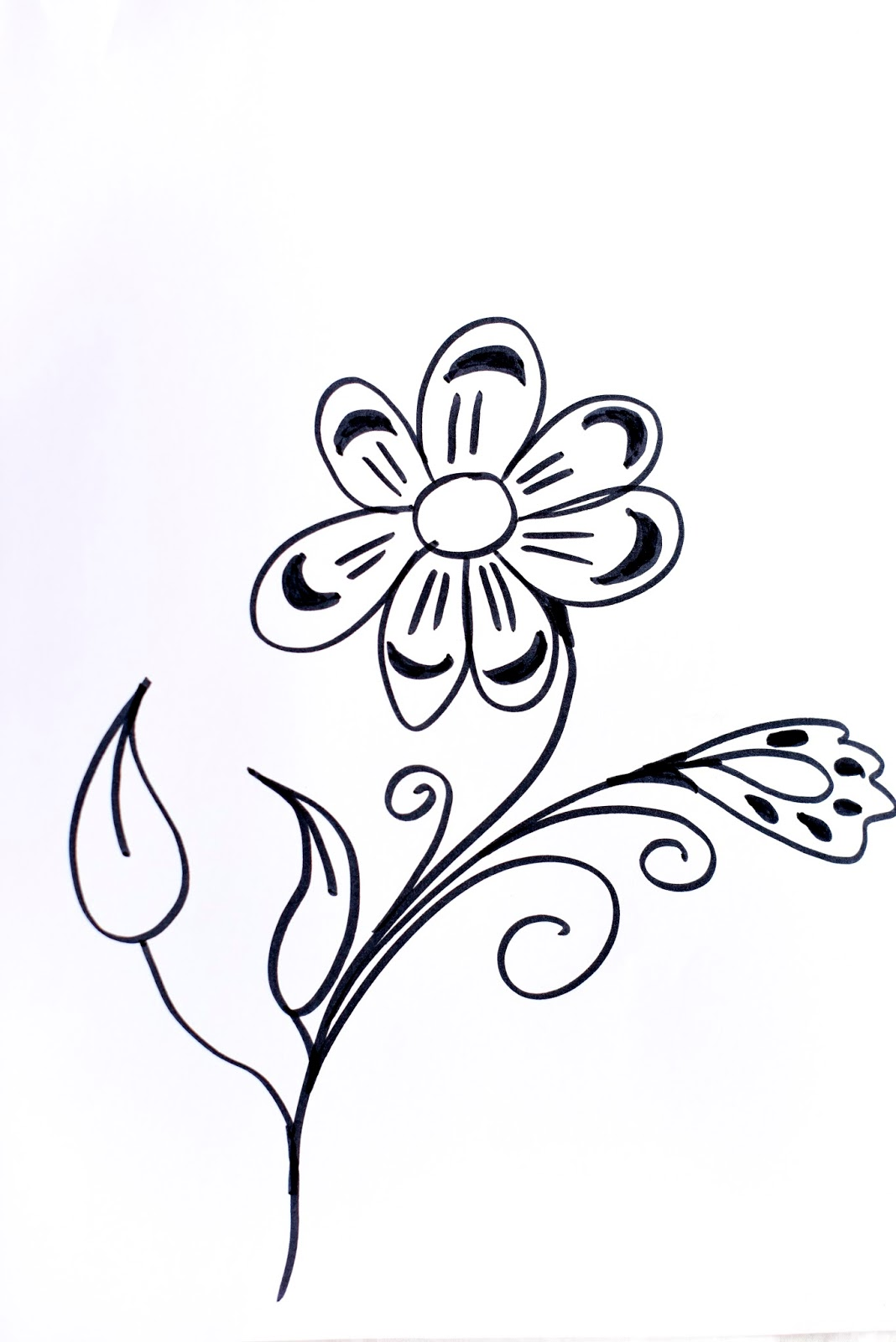 Line Drawing Flowers 15 : Lettering line drawing motivation how to draw flowers