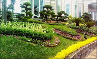 Galeri Taman - Tukang Taman Surabaya 47