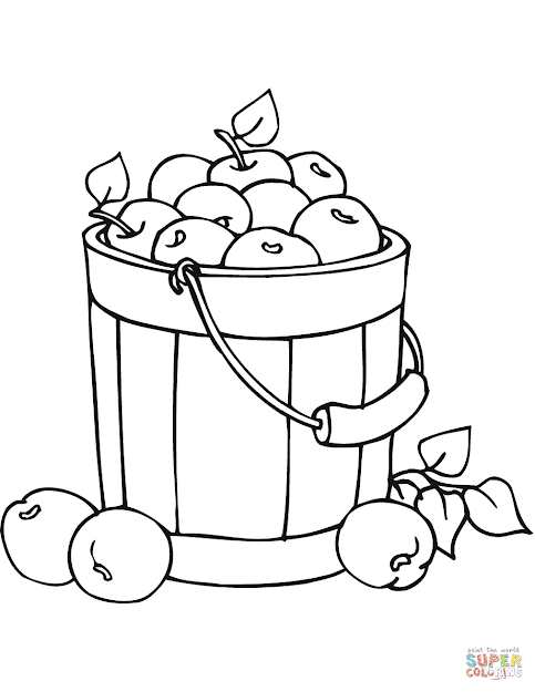 Apples In Bucket