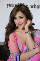 Actress Angela Krislinzki in Pink Saree Blouse Exclusive Pics March 2017 ~  014.JPG