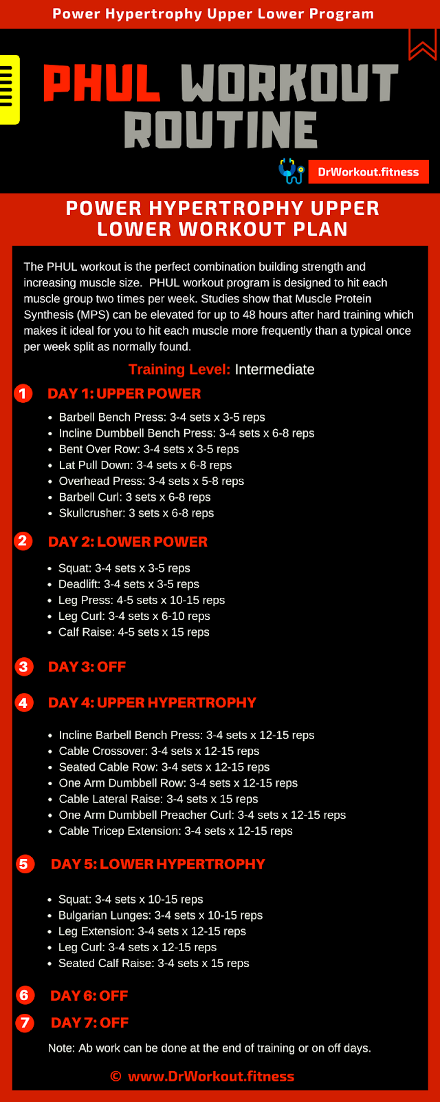 Power Hypertrophy Upper Lower (PHUL) Workout Routine | Dr Workout