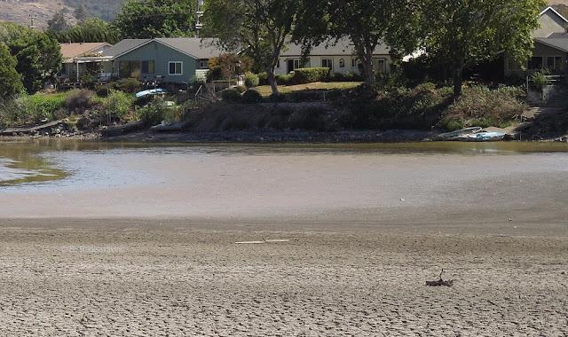 Laguna Lake, San Luis Obispo, July 2015, © B. Radisavljevic