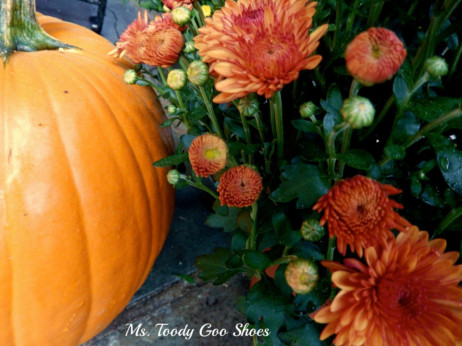 Fall Front Porch by Ms. Toody Goo Shoes