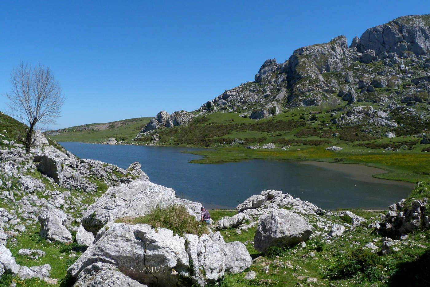 Lago Ercina - Parque Nacional Picos de Europa
