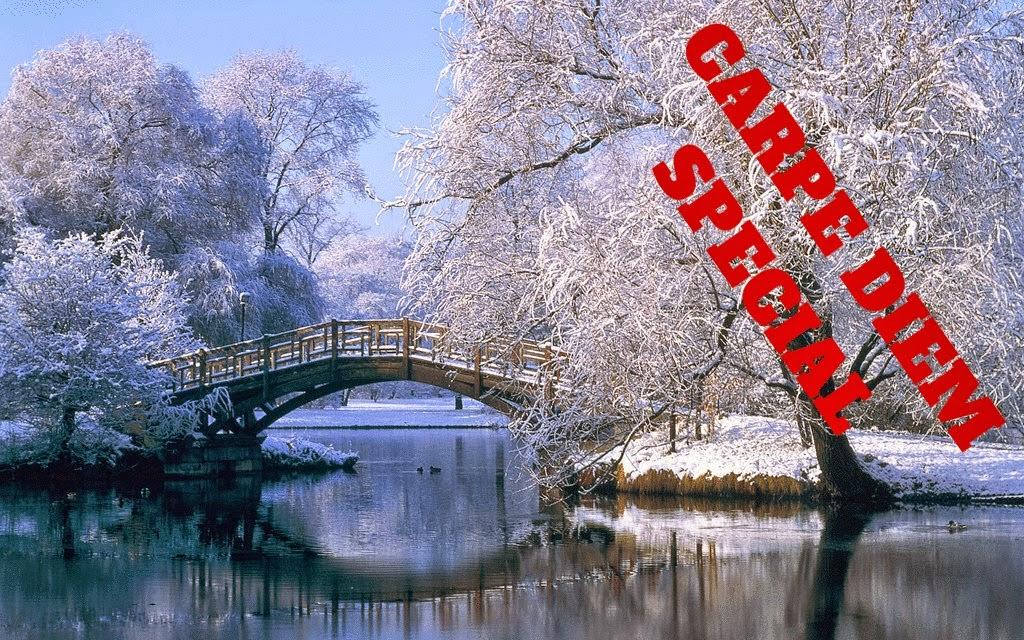 http://chevrefeuillescarpediem.blogspot.in/2015/01/carpe-diem-special-127-sogis-third.html