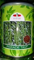 tanam kacang panjang, parade tavi, bebas virus kuning, cap panah merah, jual benih kacang panjang, toko pertanian, toko online, lmga agro