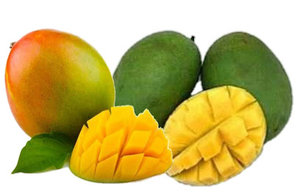 10 BENEFITS OF MANGO FRUIT FOR BODY HEALTH