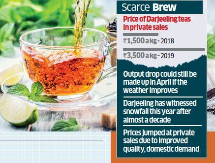 Output of Darjeeling tea likely to fall 20%