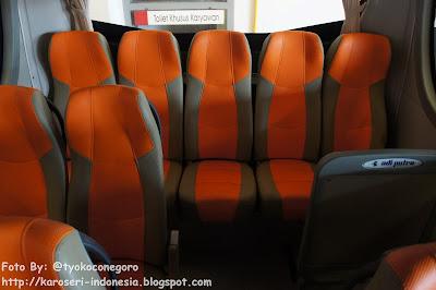 Partisi pengaman penumpang belakang