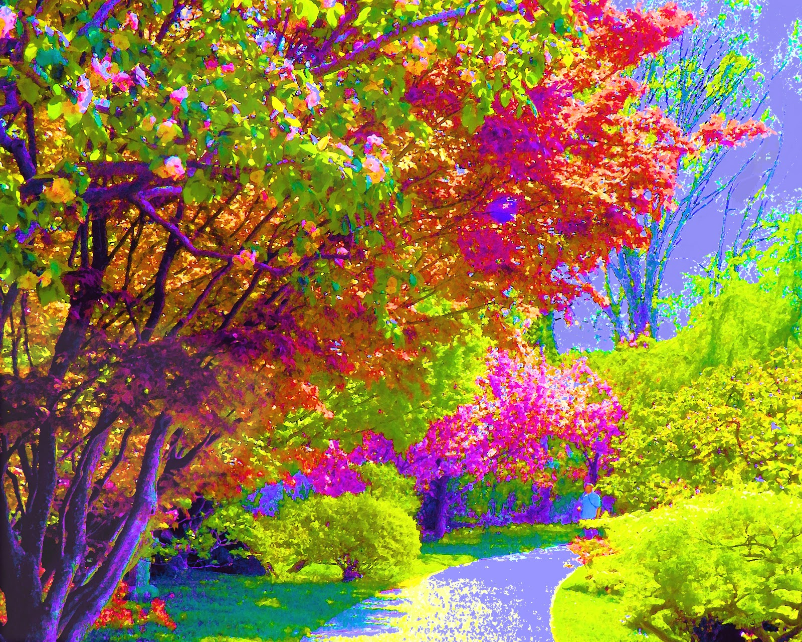 Colorful Trees Painting Background | Colorful Background ...