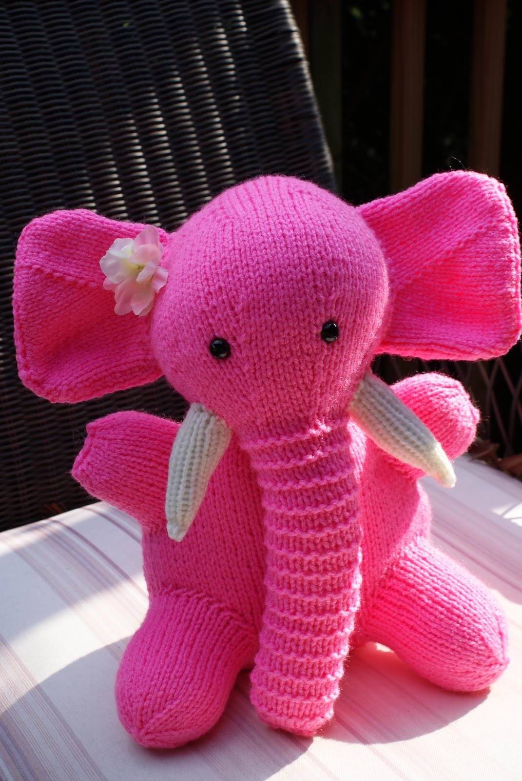 The Portuguese Water Blog I Saw A Pink Elephant