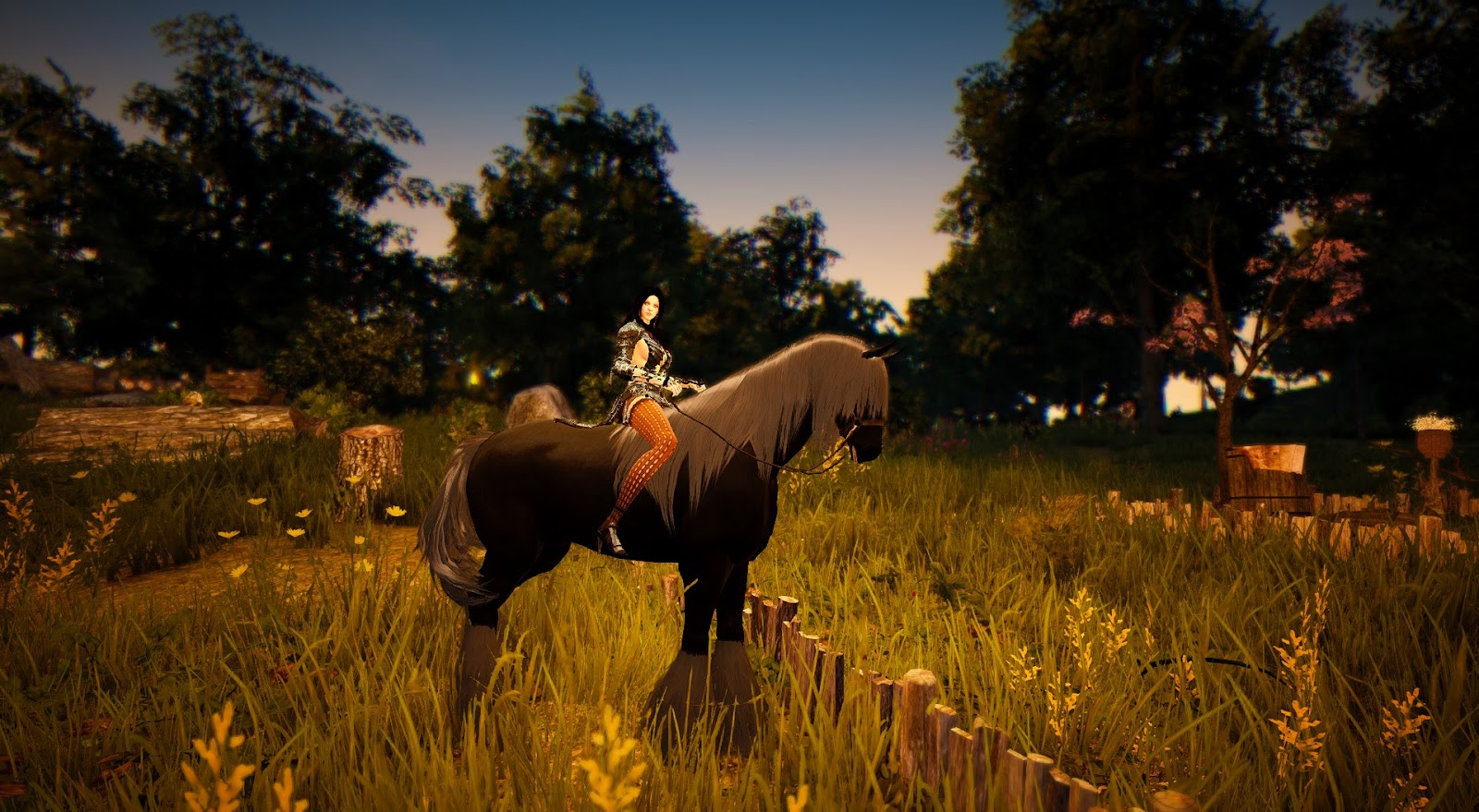 black desert horse exchange