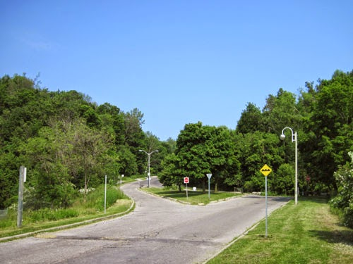 Looking up Brimley Road from Scarborough Bluffs (June)